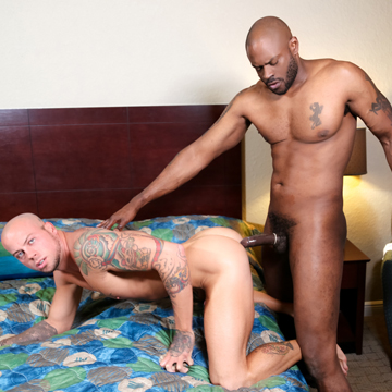 Interracial gay muscle