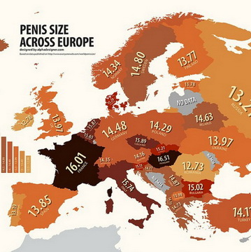 European dick size